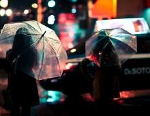 In Gentle Rain