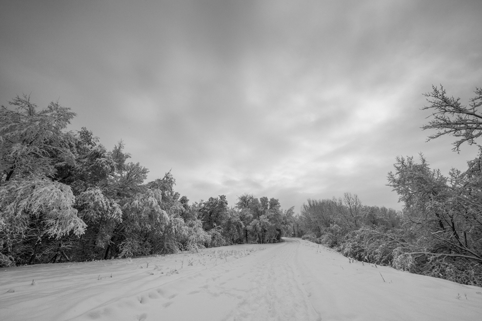 A_Bluer_Shade_Of_White_B+W-6906