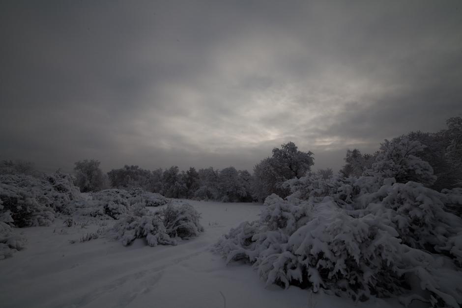 One_Winter_Morning_Original-6889