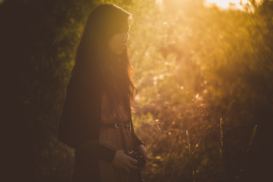 The_Evening_Light_Fuji-0520