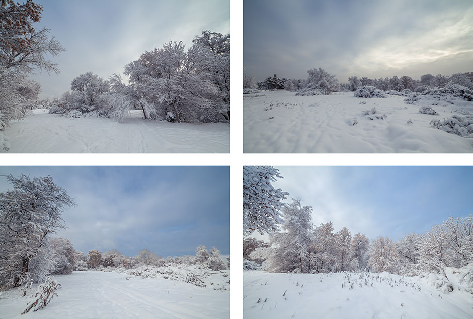 Winter_Four_Up